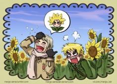 you look like a sunflower, England~ #hetalia #aph #aphrussia #aphengland #ivanbraginsky #arthurkirkland #ruseng #rusuk #margosama #sunflower