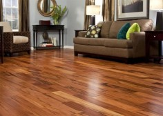 Featured Floor: Brazilian Koa
