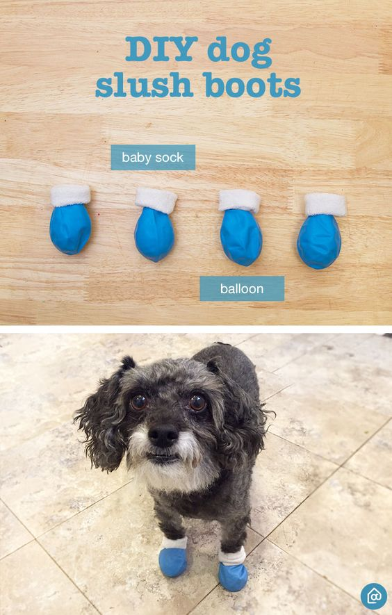 Create These Easy Diy Dog Booties Cut The Top Of The