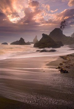 Pacific Ocean, Olympic National Park, Washington State