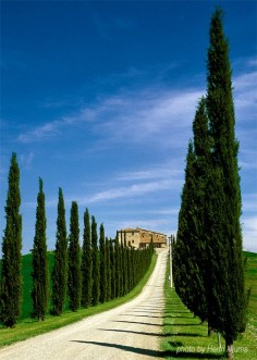 Really beautiful Tuscany, Italy