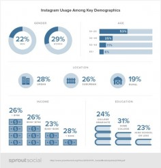 Social Demographics Instagram