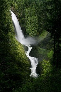 Wallace Falls State Park in Washington State