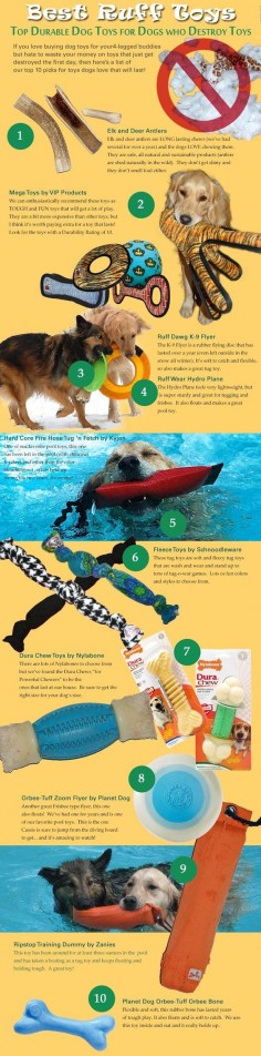 Puppy Toys For 10 And Up : Reasons why dogs lick infographic