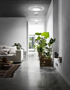 How simple and beautiful is this home? love the polished concrete!