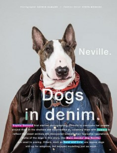 Neville Jacobs in Love Magazine's Dogs in Denim, Fall Issue 2015