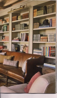 Picture  library with artfully arranged books and objects.