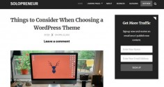 Solopreneur, A Fantastic Theme For Bloggers and Marketers
