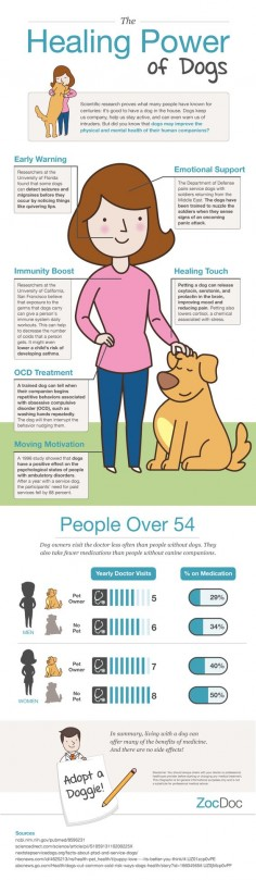 Can You Train A Dog To Protect Other Dogs